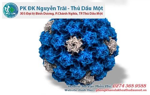 Virus HPV là tác nhân truyền bệnh sùi mào gà