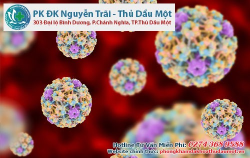 Virus HPV là thủ phạm gây bệnh