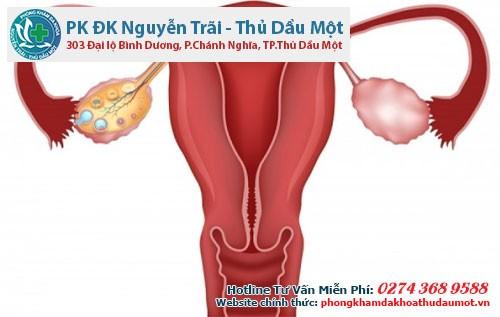 Tinh trùng được cơ thể sản xuất ra từ các ống sinh tinh