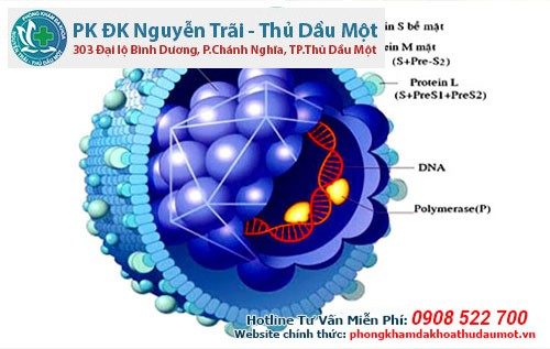 Mề đay xuất hiện do người bệnh bị nhiễm virus như viêm gan B, C