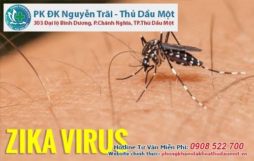 Vô sinh ở nam giới do virus zika có thật hay không?